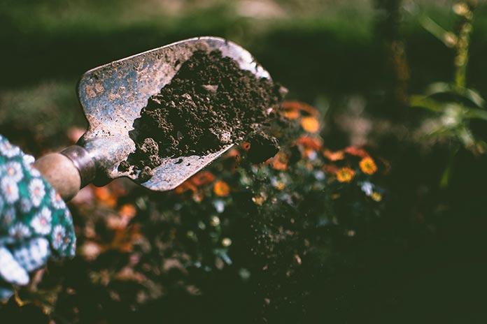 Pogreski u vrtlarstvu
